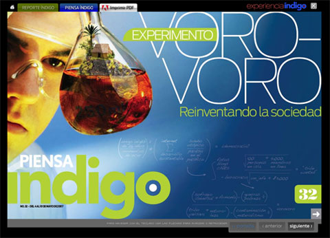 indigo_1.jpg